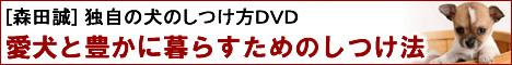 森田誠犬のしつけ方公式サイト